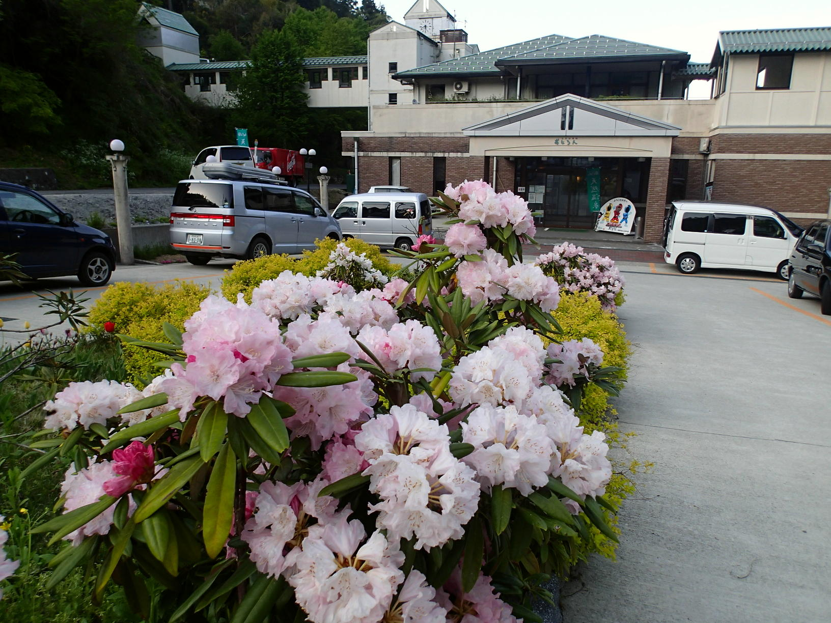 国道9号線から10分、香美町の穴場温浴施設「おじろん」