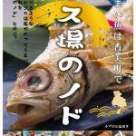 春、特に5月は香住の海産物を食べるのに最高に穴場の季節です♪
