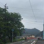 民宿かどやのすぐ近くまで「幸の鳥」がやってきた!!~佐津川橋にて遭遇!!