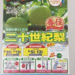 美味しい香住の二十世紀梨を安くでゲットする方法