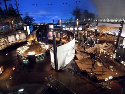 福井県立恐竜博物館に行って来ました!