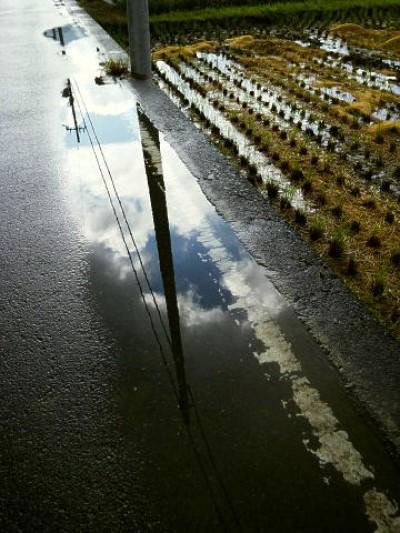 雨上がりの道の楽しみ♪〜芸術的な写真!