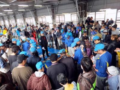 松葉ガニの競り風景、香住にて生でお昼に見たくありませんか?