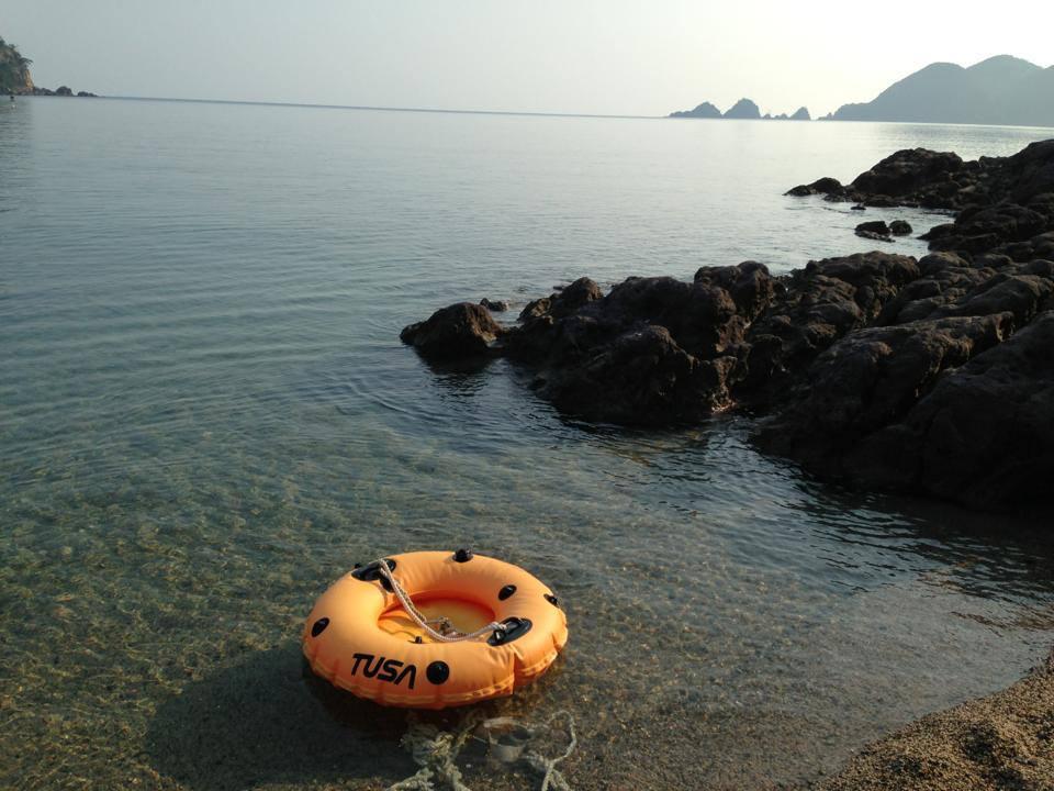 まだ間に合う!体験ダイビングで夏休みの宿題「自由研究」ができちゃう!!