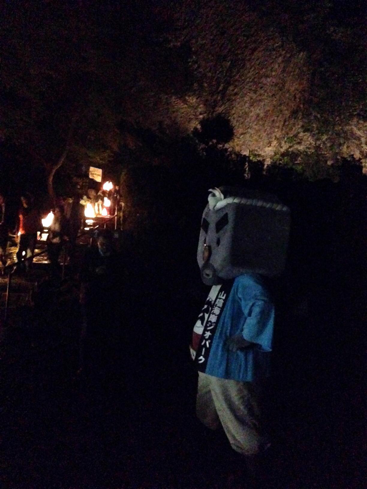 ライトアップされた玄武洞、見てきました!!