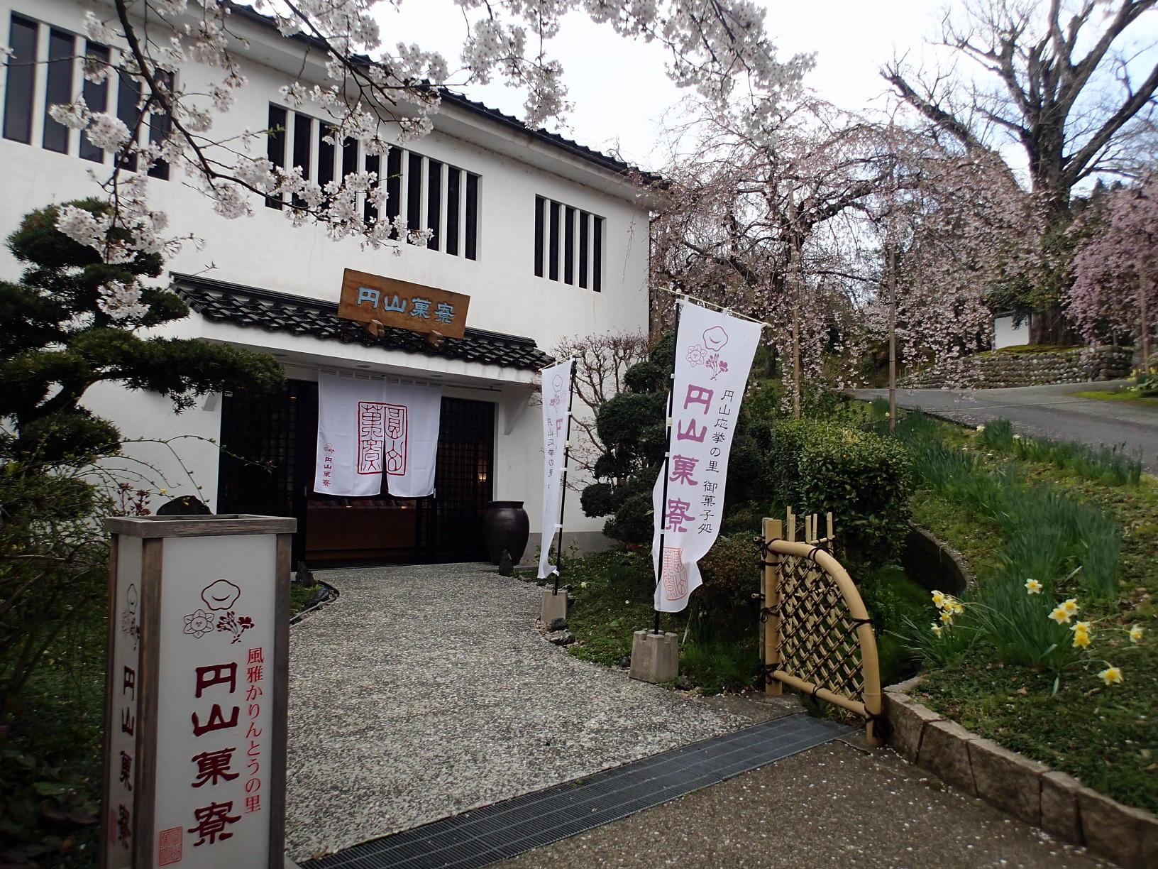 香住の桜情報と円山菓寮さん