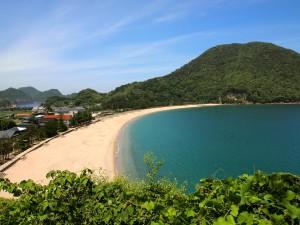 美しい佐津海岸