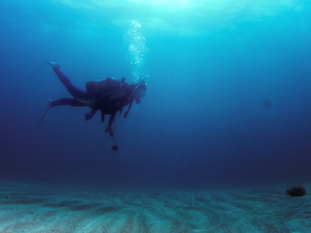 体験ダイビングって難しい?体力がないとできないの?