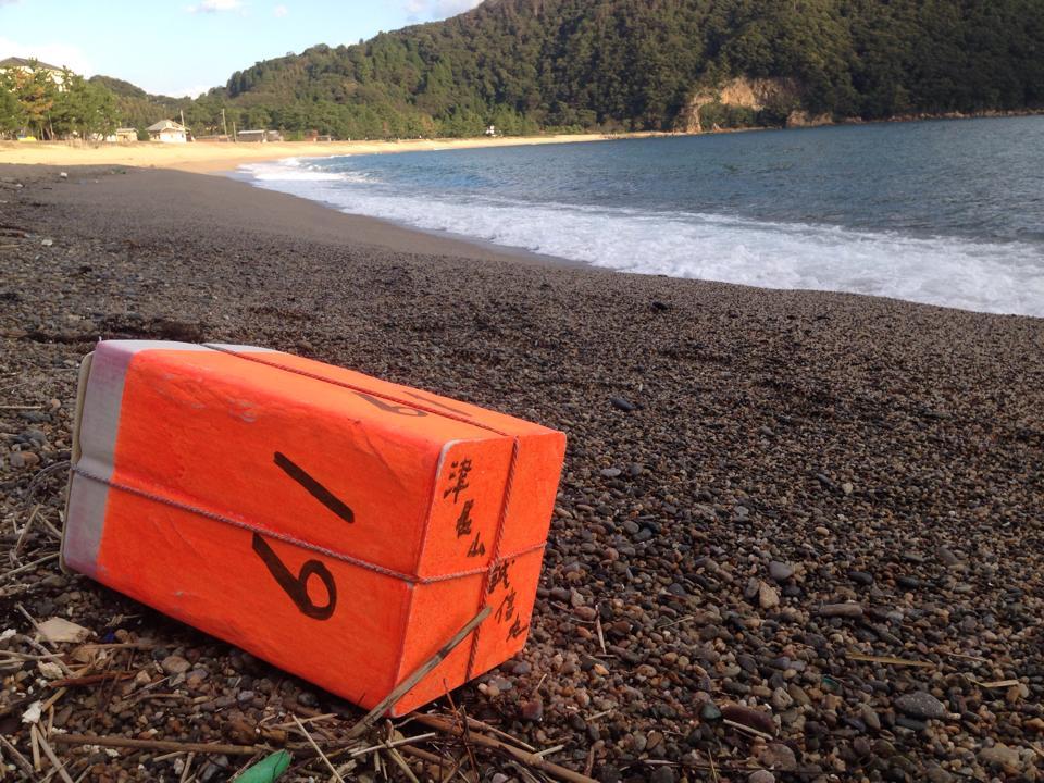 秋の日本海~漂着物が面白くなってきました♪