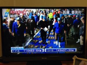 NHKカニ解禁ニュース
