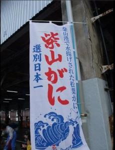 柴山港カニ選別日本一のノボリ