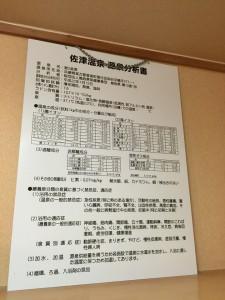 佐津温泉分析書