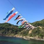 ゴールデンウイーク中は日本海を泳ぐ鯉のぼりを鎧駅で見よう!