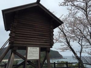 魚見台と桜