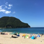 今年の日本海側の海水浴場でのクラゲの発生状況はどんな感じ?!