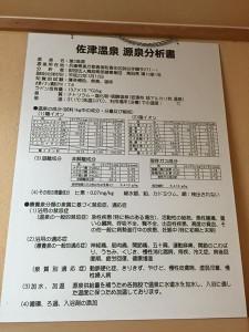 佐津温泉分析表