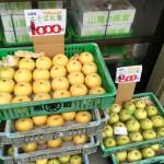 鳥取・香住の二十世紀梨(なし)を安くで買う方法☆「訳あり梨」って?