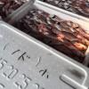 香住の港で「のどぐろ」豊漁♪食べるなら今が旬です!!【食欲の秋】