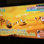 竹野のダンゴウオでよーすけ&みきちゃんがテレビに出演~読売テレビ「すまたん」