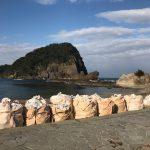 北風の吹く今の時期、日本海側の香住海岸は漂着ゴミが多いですが・・・