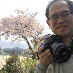 海と桜☆香住・佐津海岸魚見台の桜、開花のピークを一眼レフで撮影してきました♪