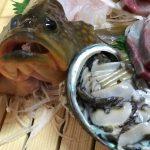 活イカが入手できない時の料理はどんな海産物に変わりますか?