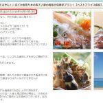 活イカと活オコゼは8月のいつ頃まで食べることができますか?