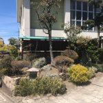 かどや前学校側にある庭をキレイに剪定しました!!