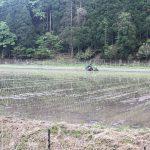 佐津谷名物の減農薬栽培のお米「かにのほほえみ」「かにひかり」の田植えが始まりました!!