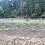 カニの季節が終わってでもどこかしらで蟹が関わっているのが香住スタイル☆畑や田んぼにはカニ殼をまく