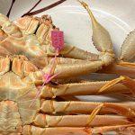 本日、3月21日が今シーズン最終の松葉ガニ漁競りとなります!!
