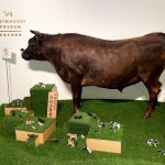遅くなりましたが、3年前にリニューアルした但馬牧場公園にある但馬牛博物館に行ってきました!