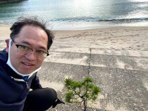 佐津浜のド根性松