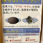 アワビの密漁で罰金1千万円!?サザエの密漁で罰金百万円!??漁業法が厳しく改定されています