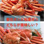 香住ガニ(紅ズワイガニ)と松葉ガニ(ズワイガニ)、どちらが美味しいですか?