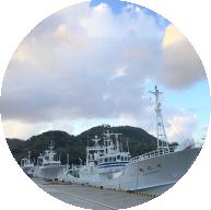 柴山港の底曳き網船